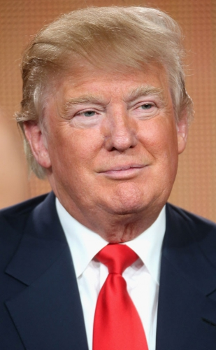 rs_634x1024-150929095334-634-donald-trump-hair.jpg